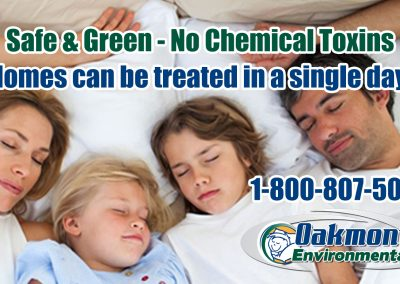 Non-Toxic Bed Bug Treatment – Safe for your Family!