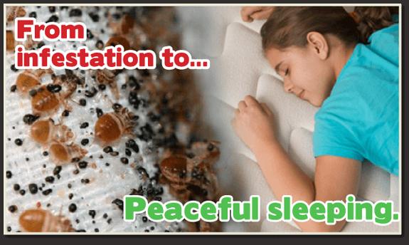 safe bed bug heat, bed bug control, bed bug heat treatment, bed bug bites, Kill bed bugs NJ, Kill bed bugs, nontoxic bed bug treatment, non-toxic bed bug treatment, non toxic bed bug treatment NJ